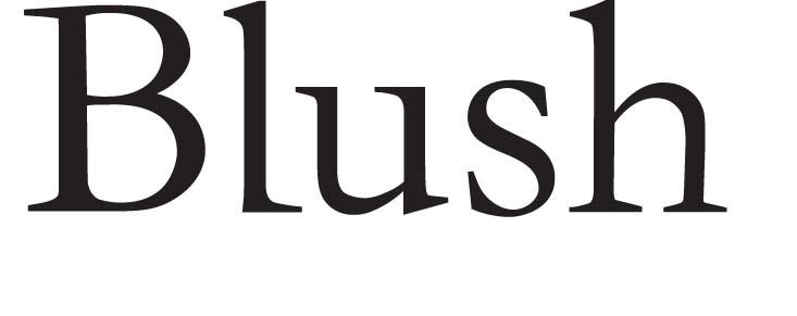 Blush sieraden logo